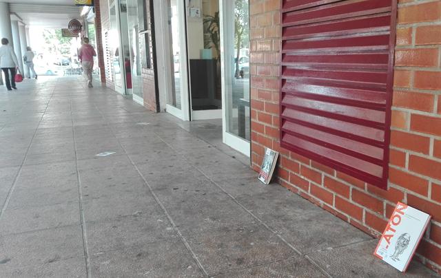 Liberación de libros gratis en Parque Goya